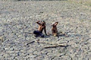 Farmers Suicides 1
