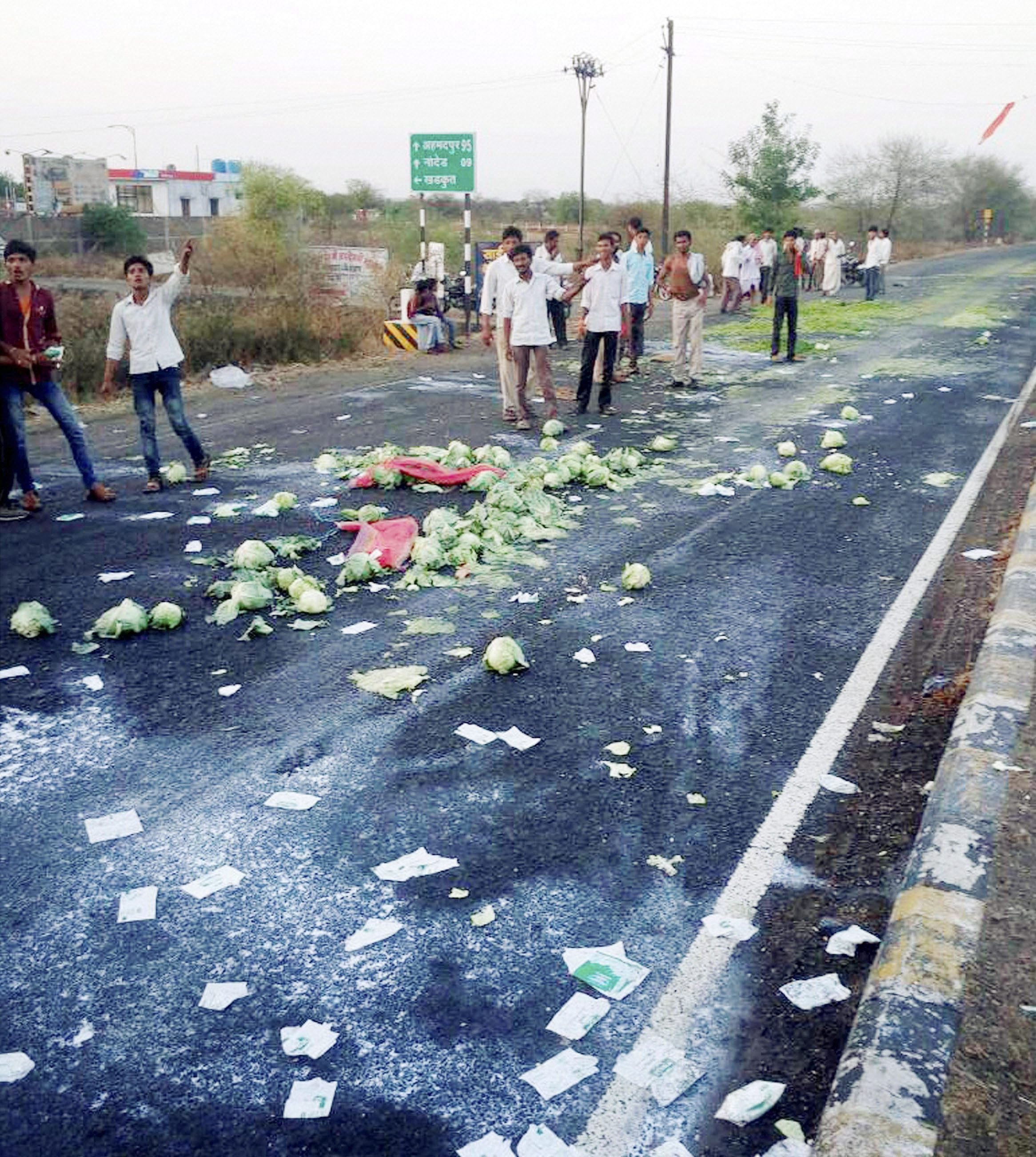 Aurangabad: Farmers throw vegetables on a road during their state-wide protest over various demands in Aurangabad on Thursday. PTI Photo   (PTI6_1_2017_000215A)