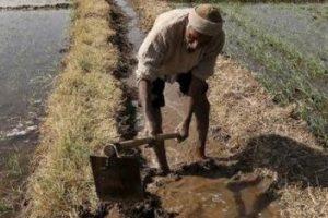farmer-reuters