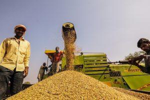 farmers photo Flicker