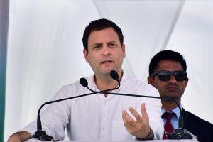 कांग्रेस अध्यक्ष राहुल गांधी (फोटो: पीटीआई)