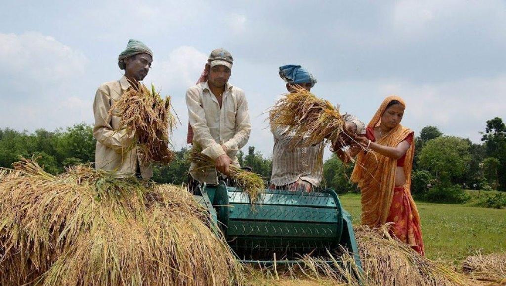 Farmers-Agricuture-India-PTI