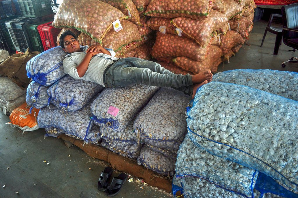 Patiala: A labourer rest on sacks of vegetables on the 1st day of 10 day strike called by the farmers' unions for suply of Vegetables and Milk products in protest against hike of fuel prices, in Patiala on Saturday