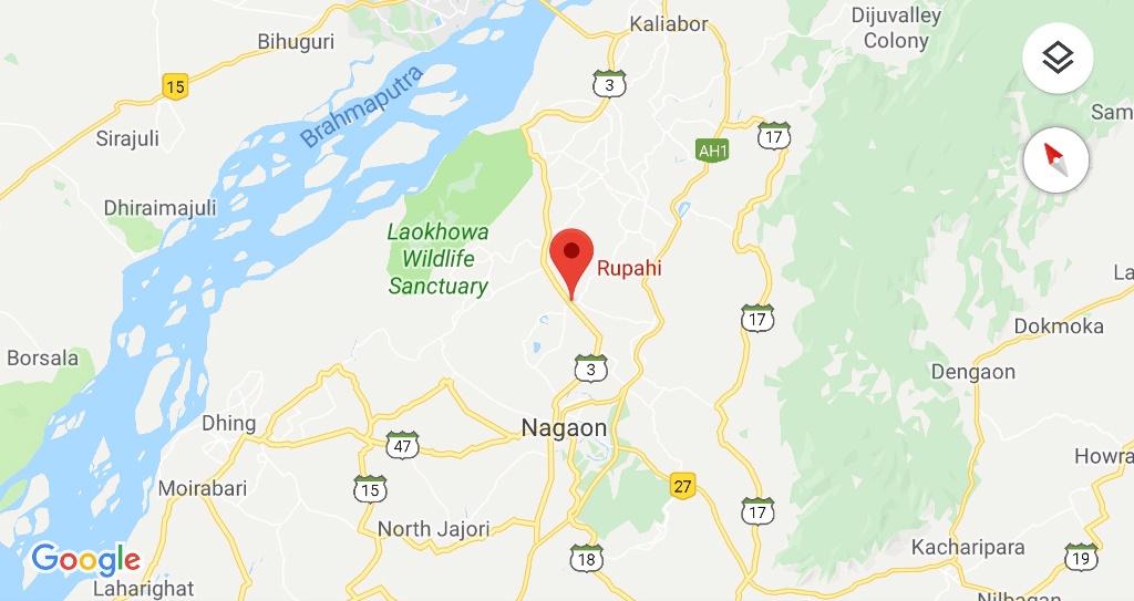 Rupahi Assam