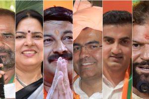 Delhi MPs Collage