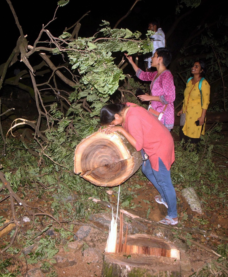 Mumbai: People enter in to the metro car shed on the spot during tree cutting at Aarey colony in Mumbai late Friday, Oct 4, 2019. (PTI Photo) (PTI10_5_2019_000003B)