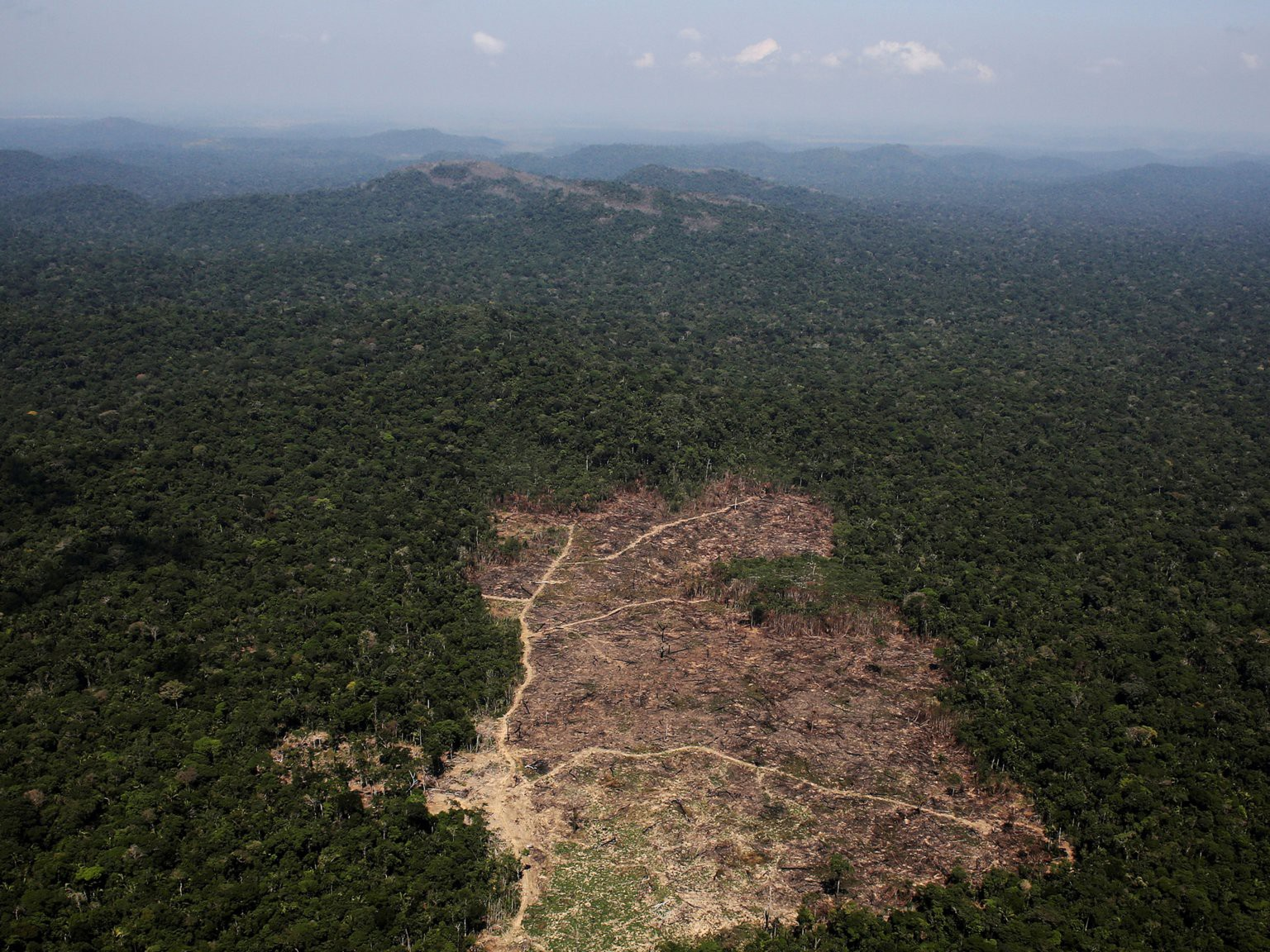 FILE PHOTO: An aerial view of a tract of Amazon jungle recently cleared by loggers and farmers near the city of Novo Progresso, Brazil September 22, 2013. REUTERS/Nacho Doce//File Photo