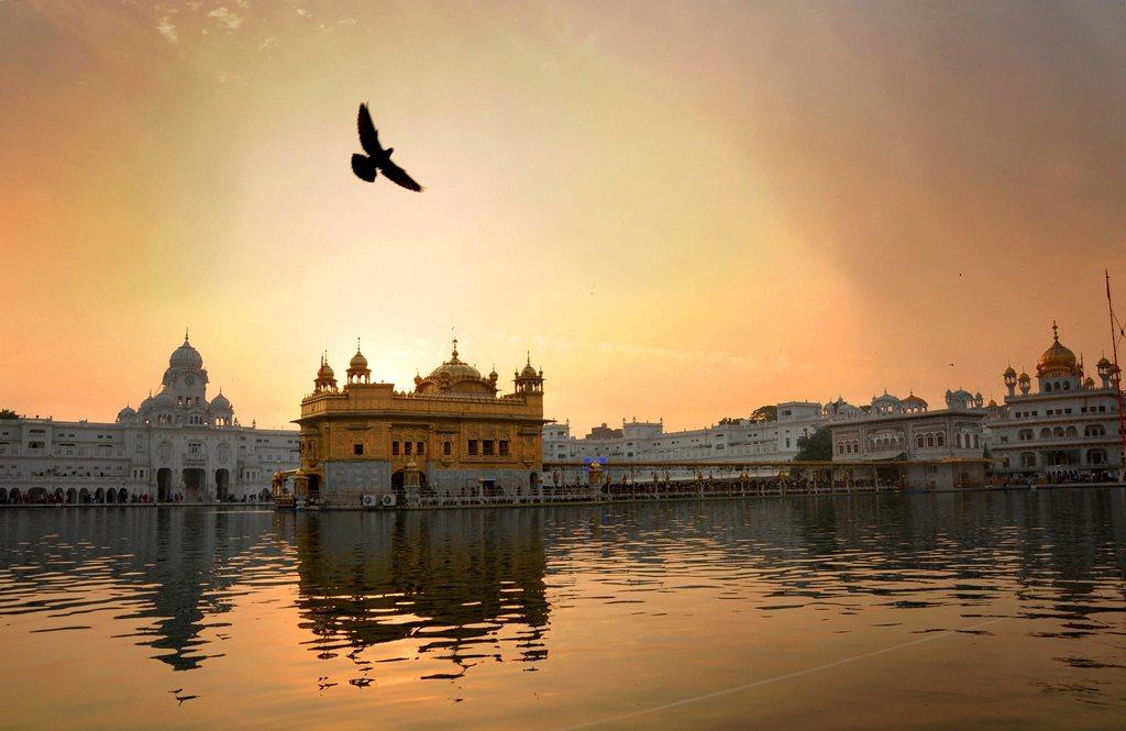 अमृतसर स्थित स्वर्ण मंदिर. (फोटो: पीटीआई)