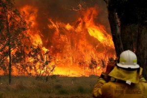 ऑस्ट्रेलिया के न्यू साउथ वेल्स प्रांत में लगी आग. (फोटो: रॉयटर्स)