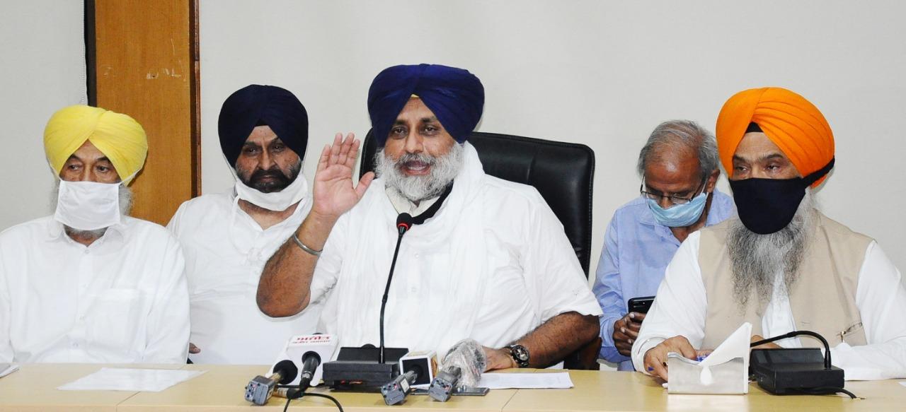 शनिवार को अकाली दल की कोर समिति की बैठक में पार्टी प्रमुख सुखबीर सिंह बादल. (फोटो साभार: ट्विटर/@officeofssbadal)