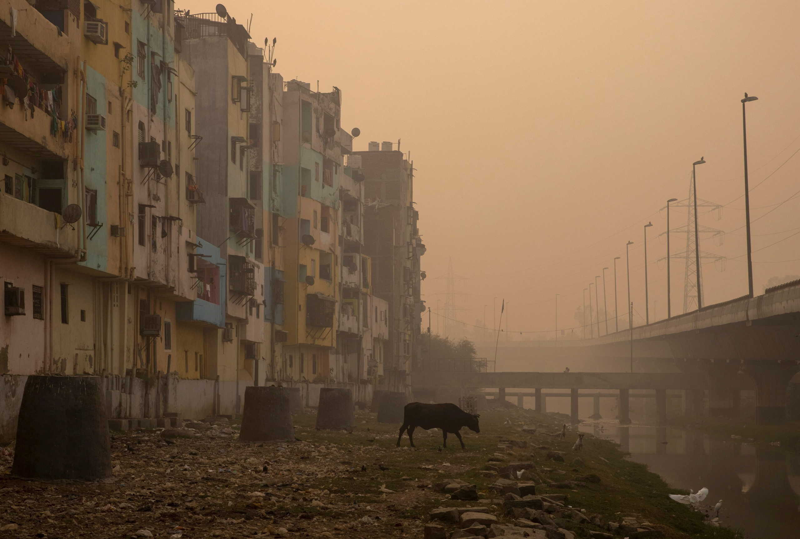 A residential area is seen shrouded in smog in New Delhi, India, November 9, 2020. REUTERS/Danish Siddiqui     TPX IMAGES OF THE DAY