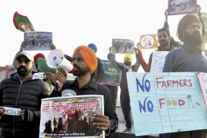 Patiala: Farmers stage a protest against new farm law in Patiala, Sunday, Jan. 31, 2021. (PTI Photo) by Rajesh Sachar(PTI01_31_2021_000251B)