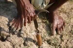 Farmer-Sickle_Reuters 1
