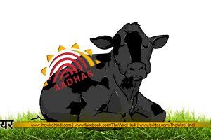Cow Aadhaar2