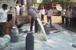 बीते जून में भी महाराष्ट्र और मध्य प्रदेश के किसानों ने विरोध स्वरूप दूध, फल और सब्जियों की आपूर्ति रोक दी थी और अपने उत्पाद सड़कों पर फेंक दिए थे. (फाइल फोटो: पीटीआई)