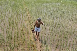 punjab_farmers_Reuters