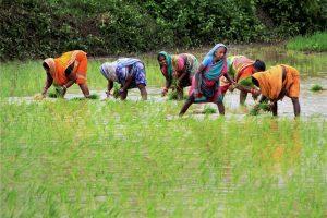 Farmers PTI