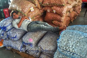 Patiala: A labourer rest on sacks of vegetables on the 1st day of 10 day strike called by the farmers' unions for suply of Vegetables and Milk products in protest against hike of fuel prices, in Patiala on Saturday, Jun 02, 2018. (PTI Photo) (PTI6_2_2018_000139B)