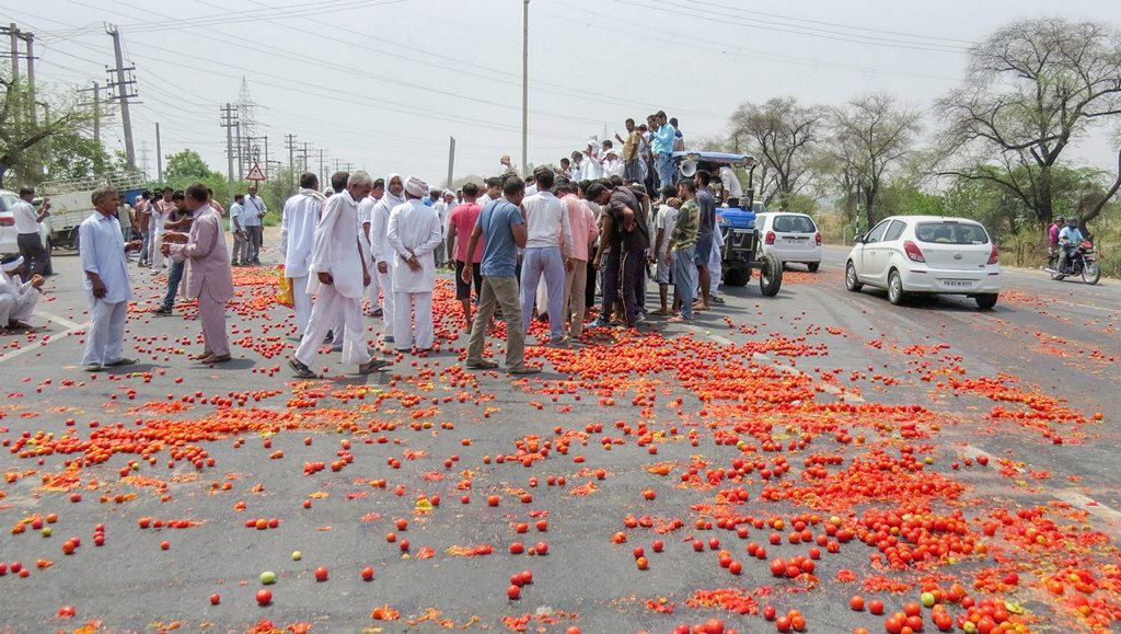 Hisar: Vegetables lie scattered on a road as farmer's protest enters third day, in Hisar, on Sunday, June 03, 2018. (PTI Photo) (PTI6_3_2018_000055B)