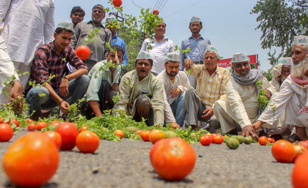 Meerut: Bharatiya Kisan Andolan activists along with the farmers throw tomatoes on a road during a protest various issues of the farmers including their loan waiver, in Meerut on Sunday, June 03, 2018. (PTI Photo) (PTI6_3_2018_000093B)