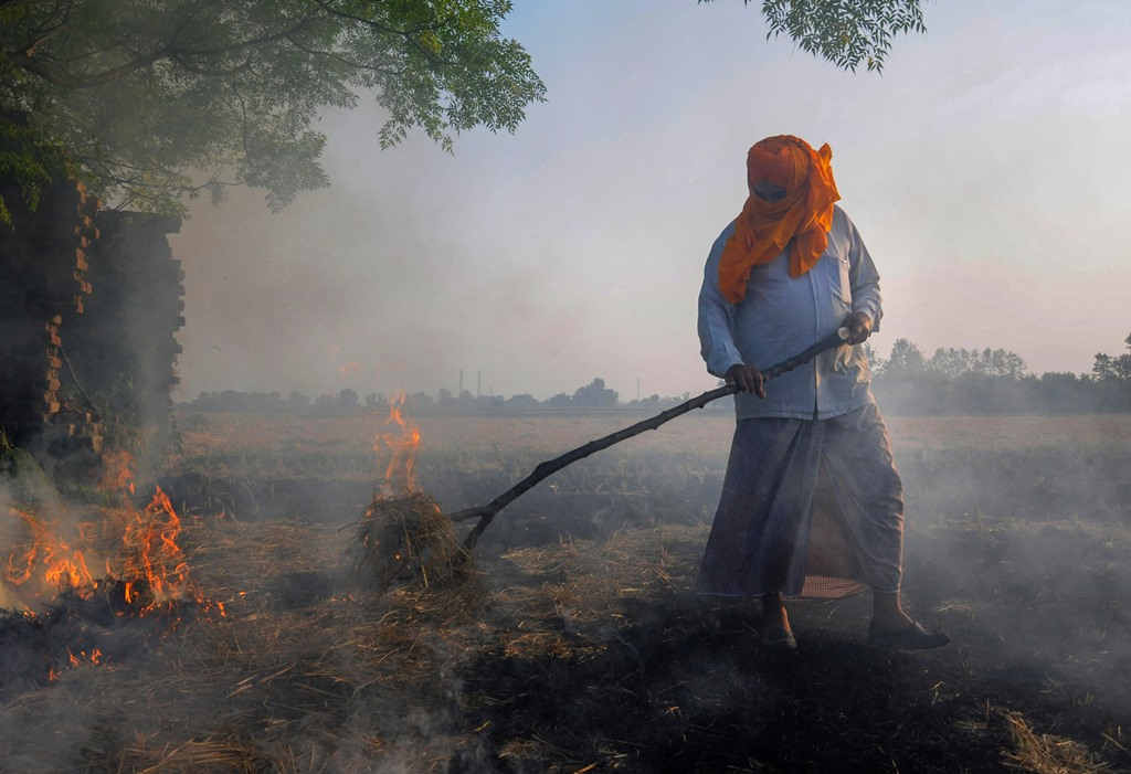 Amritsar: Smoke rises as a farmer burns paddy stubbles at a village on the outskirts of Amritsar, Friday, Oct 12, 2018. Farmers are burning paddy stubble despite a ban, before growing the next crop. (PTI Photo) (PTI10_12_2018_1000108B)