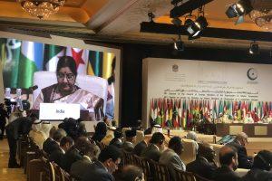 ओआईसी की बैठक को संबोधित करतीं विदेश मंत्री सुषमा स्वराज. (फोटो साभार: ट्विटर/@OIC_OCI)