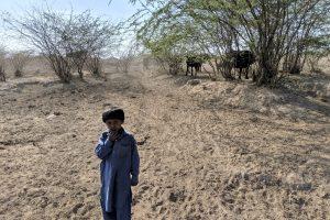 Gujarat Drought Photo Kabir Agarwal (2)