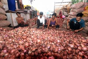 **EDS: WITH PTI STORY** New Delhi: Lebourers sort onions at Azadpur Mandi, a major market of the Agriculture Produce Marketing Committee (APMC), in New Delhi, Sunday, Sept. 22, 2019. Onion prices are spiralling reportedly due to shortage of supply, and also amid reports of crop damage and delay in arrivals of new crop. (PTI Photo/Shahbaz Khan) (PTI9_22_2019_000022B)