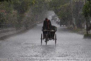 Jalandhar: A rickshaw puller makes its way through rain, in Jalandhar, Friday, May 29, 2020. (PTI Photo) (PTI29-05-2020_000133B)