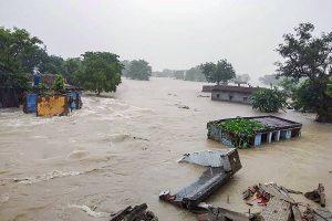बिहार के गोपालगंज में बाढ़ का नजारा (फोटो: पीटीआई)