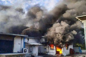 पुणे के घोटवाडे फाटा में स्थित संयत्र में आग लगने से कम से कम 18 लोगों की मौत हो गई. (फोटो: पीटीआई)